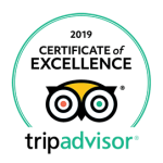 Certificate of Excellence 2019 TripAdvisor surf board shop Magic Board Center Lagos