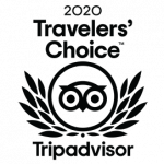 Traveler's Choice 2020 TripAdvisor surf shop Magic Board Center Lagos